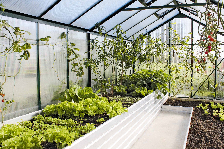 kr utergarten garten terrasse oder als beet wohnen. Black Bedroom Furniture Sets. Home Design Ideas