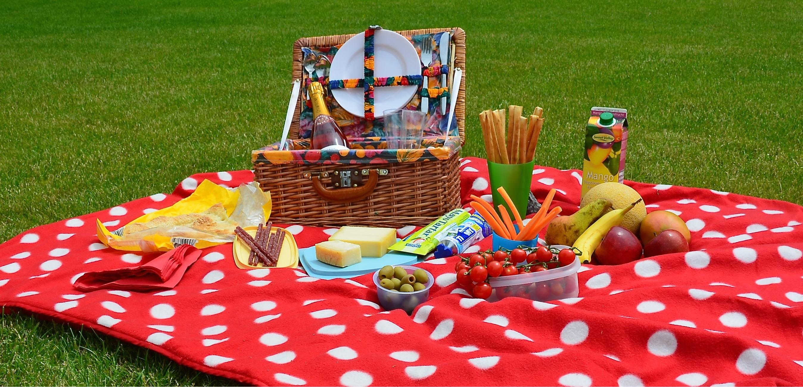 Connu Un perfetto picnic estivo | Abitare | homegate.ch UQ38