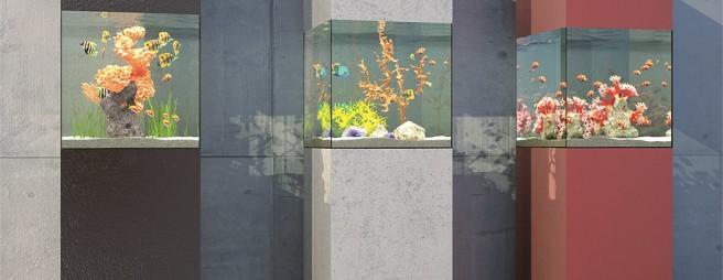 aquarium: die unterwasserwelt | wohnen | homegate.ch - Aquarium Wohnzimmer