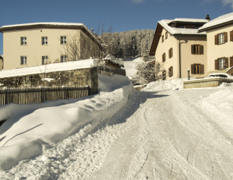 Typical houses in a mountain village in the Engadine