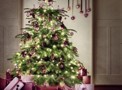 Unpassende Geschenke unterm Weihnachtsbaum? Kein Problem. Bei Migros z.B. können Artikel gegen Vorweisen der Quittung, des Garantiescheins oder des EC-Belegs innert 30 Tagen umgetauscht oder zurückgegeben werden. Bildquelle © Migros