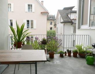 Pflanzen mag Stefan Jung vor allem draussen auf der Loggia.