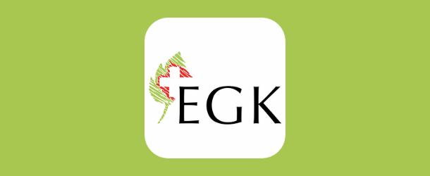 egk-app