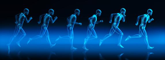 Bewegungsphasen eines Läufers