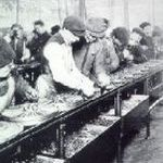 Arbeiter in einem Fordwerk 1913.