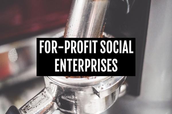 For_profit_ses