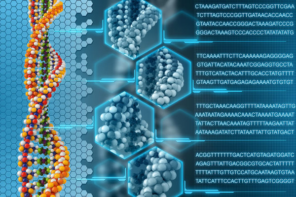 An-introduction-to-genetics-thumb