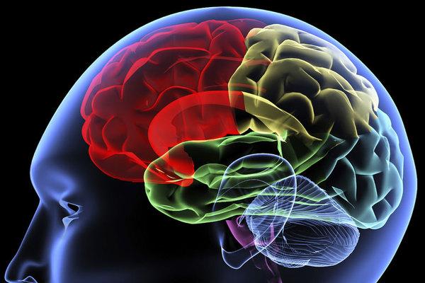 Developmental-psychology-thumb