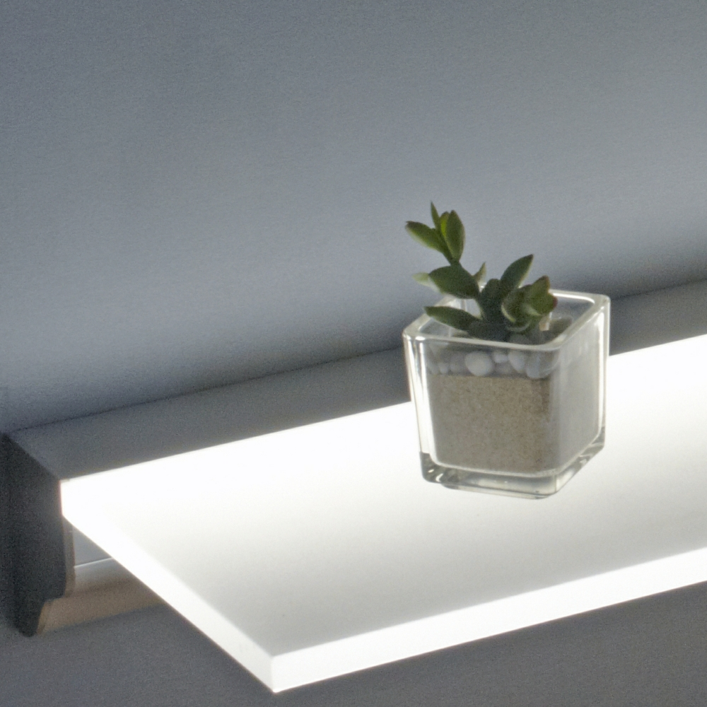 Plant on LED shelf