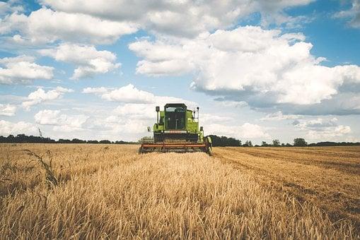 Entreprise agricole