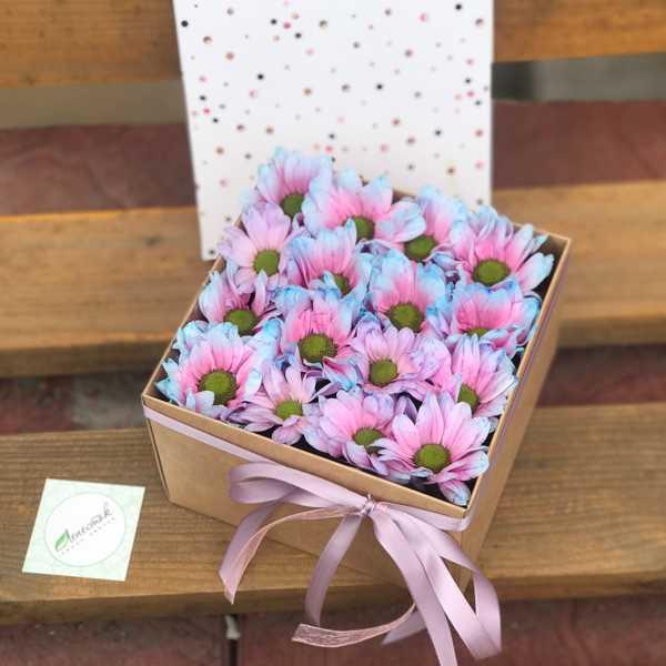 Коробочка из хризантем Бабл Гам