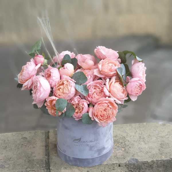 Бархатный цилиндр с пионовидной розой Джульета