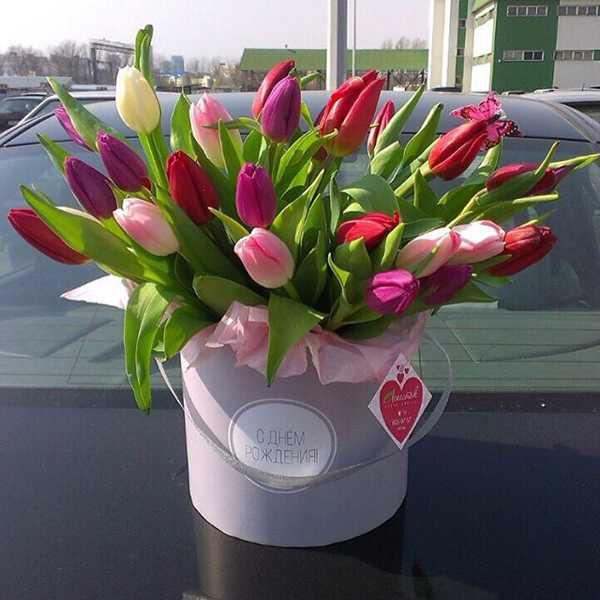 Цилиндр из 31 тюльпана