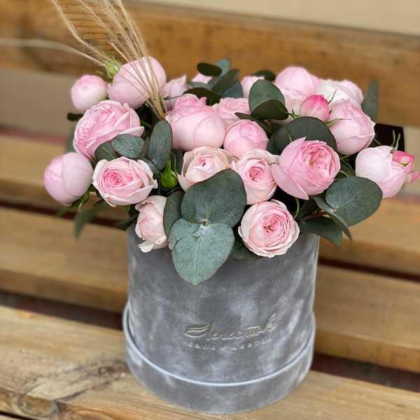 Бархатный цилиндр с пионовидной розой Мэнсфилд Парк
