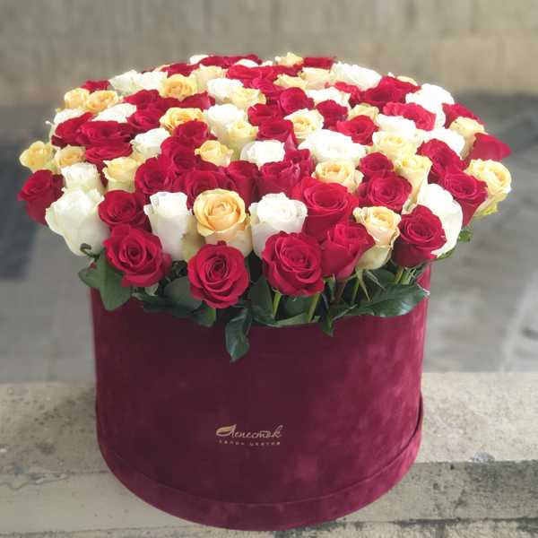 101 роза в бархатном цилиндре