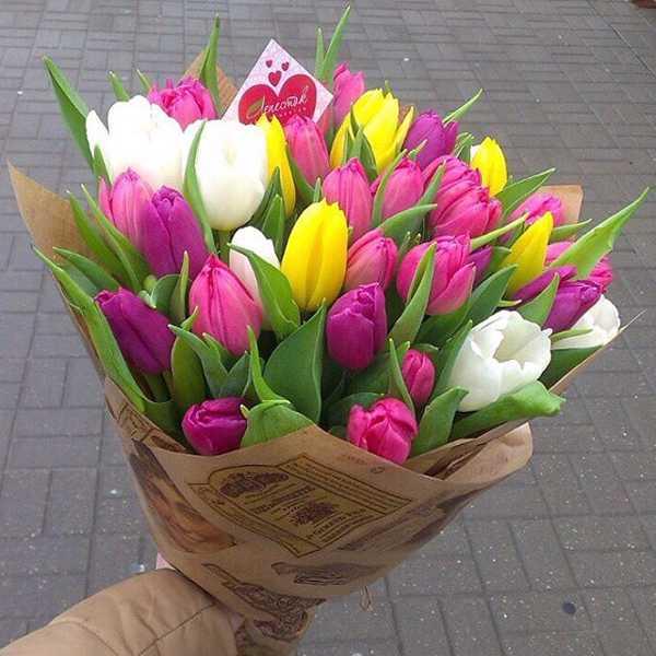 Букет из 35 тюльпанов в упаковке
