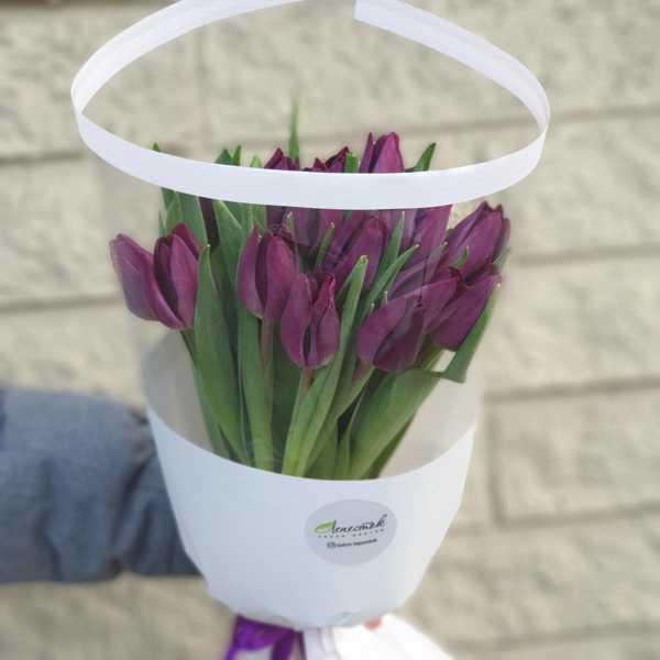 Букетик из 15 фиолетовых тюльпанов