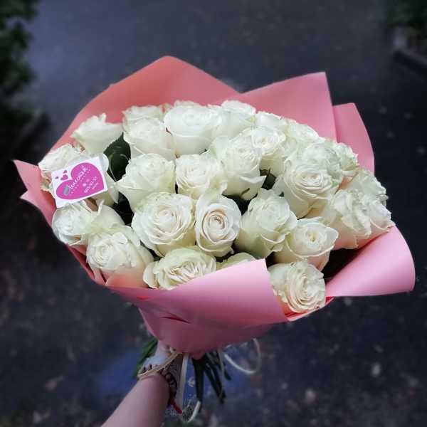 31 белая роза ( Mondial) в упаковке