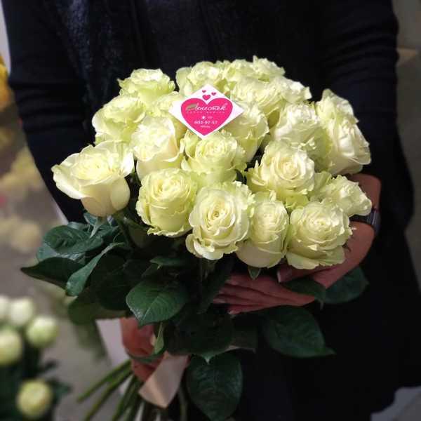 Букет из 21 импортной белой розы Mondial