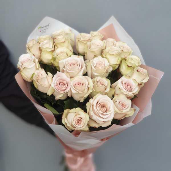 25 сортовых роз Quicksand