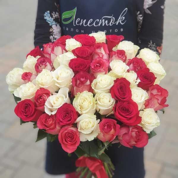 Букет из 47 импортных роз Фридом, Мондиаль, Игуазу