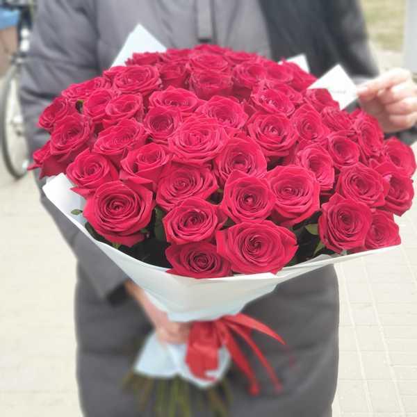 Букет из 51 белорусской красной розы