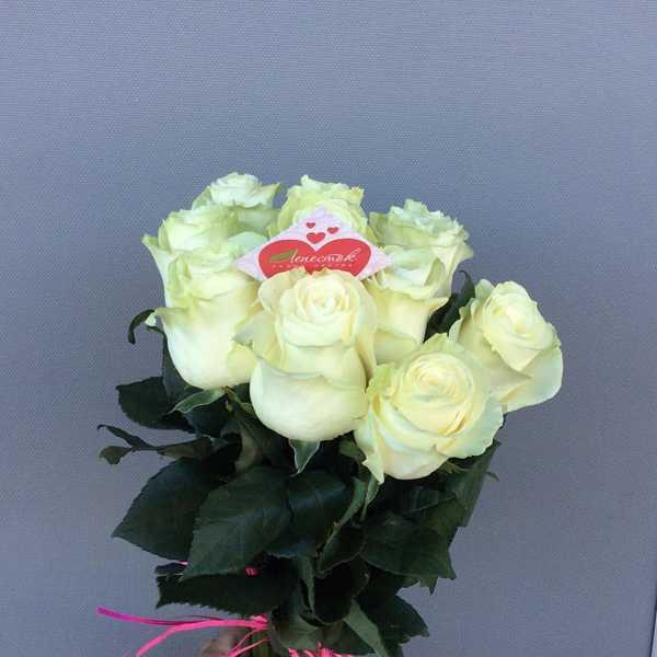 Букет из 11 белых роз с атласной лентой