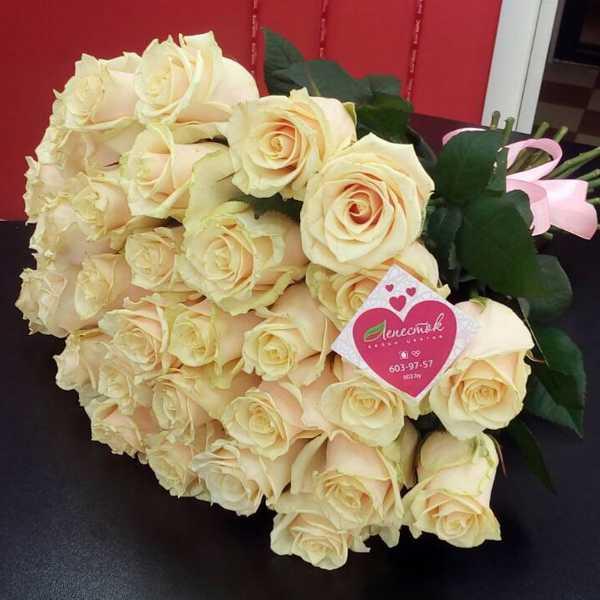31 персиковая роза