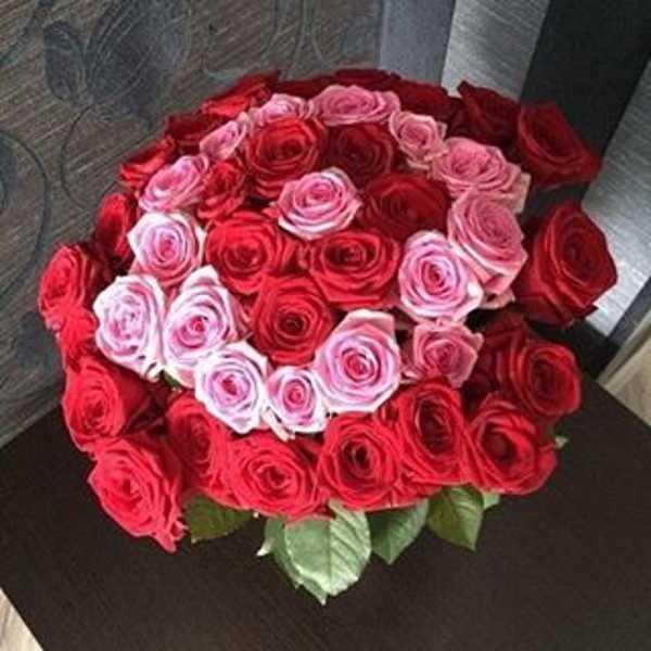 Букет из 43 роз