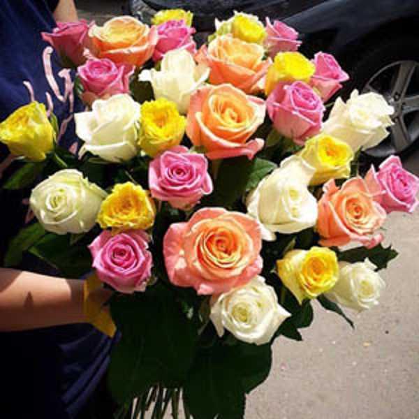 31 роза ассорти
