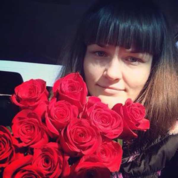 15 роз. Сорт Фридом