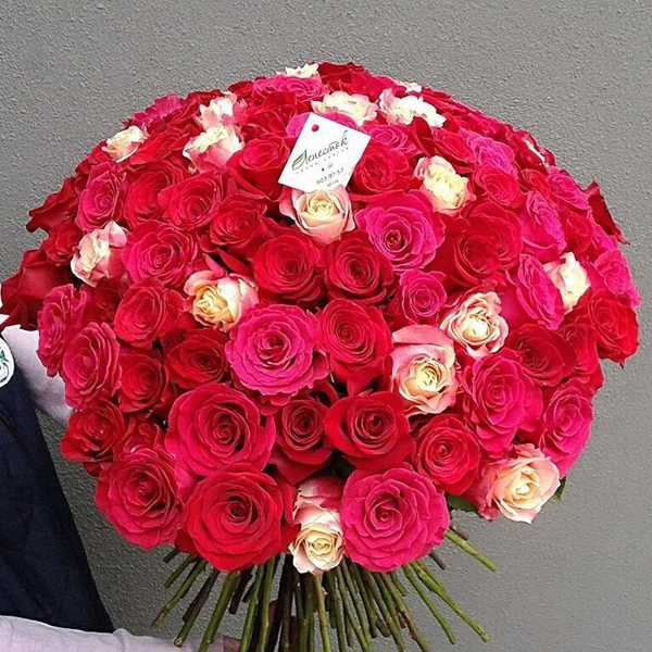 Букет из 101 розы 3 цветов