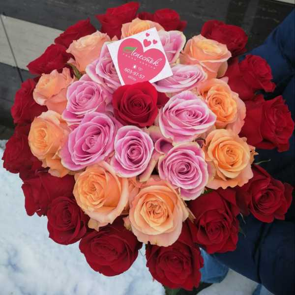 33 импортные розы