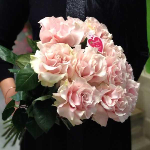 Букет из 11 французских роз