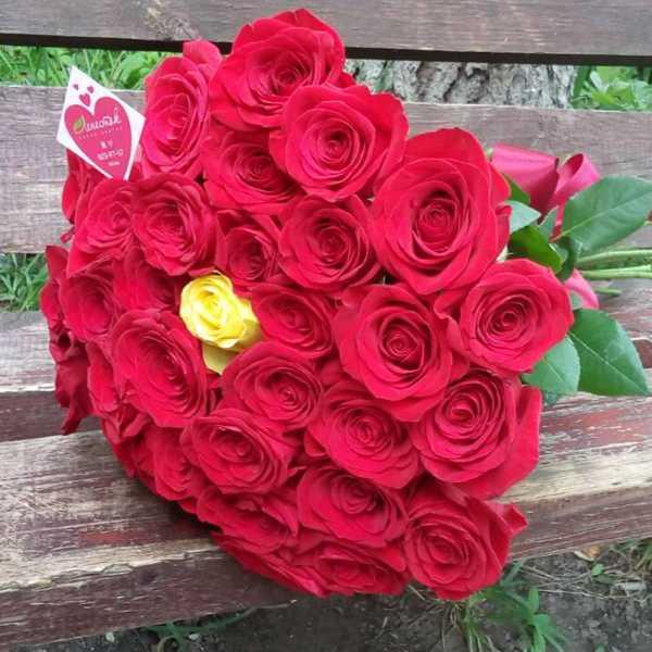 Букет из 31 розы на юбилей