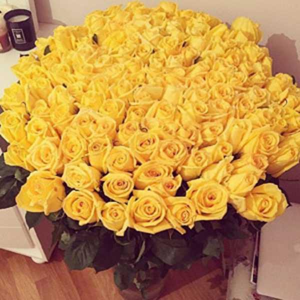 101 роза желтого цвета