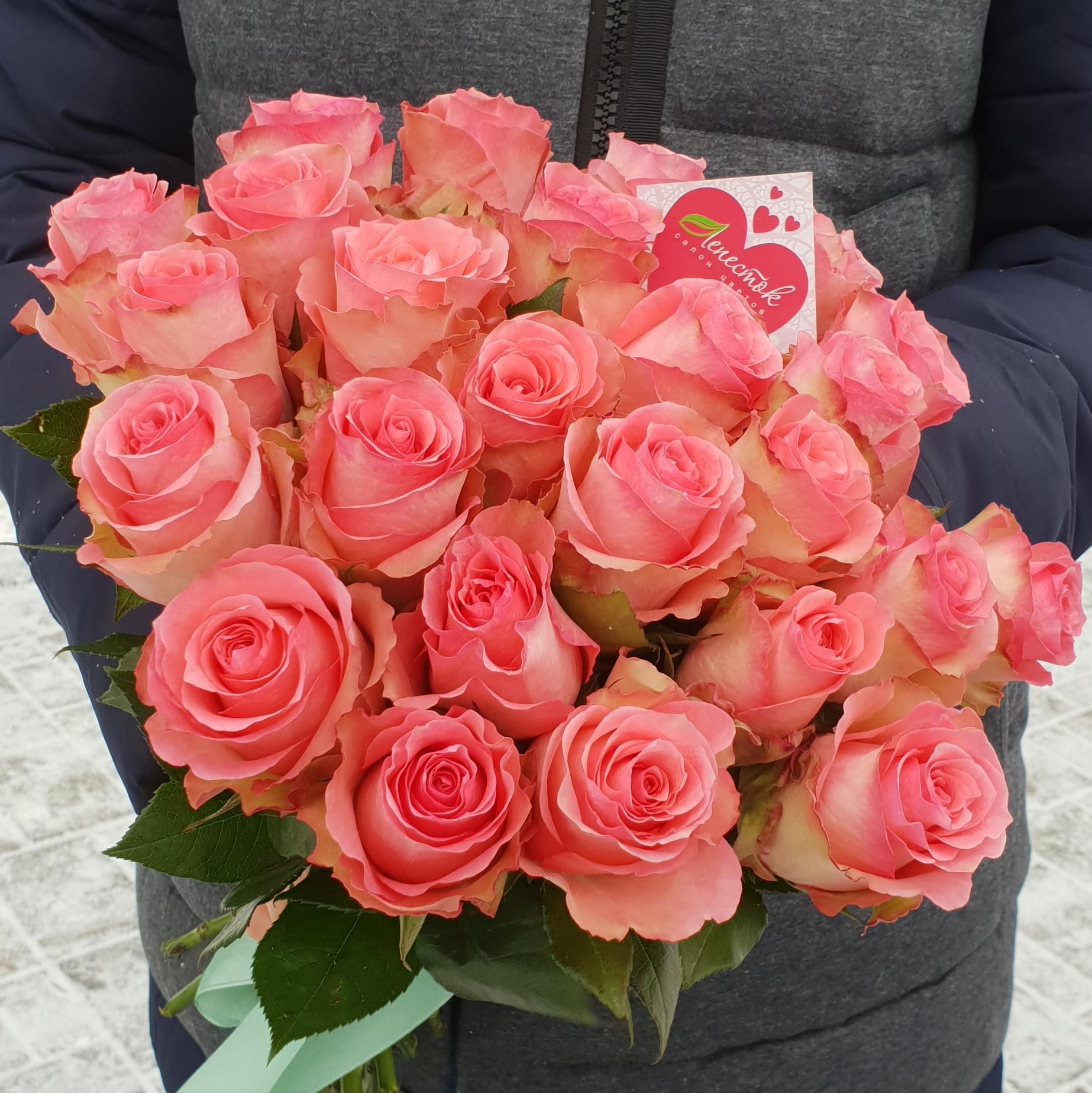 Букет из розовых роз 25 штук.