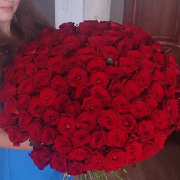 101 роза красного цвета 60 см
