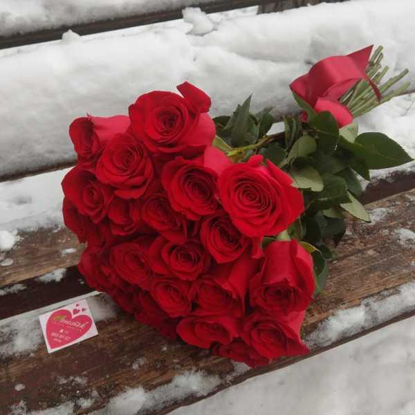 25 импортных, красных роз