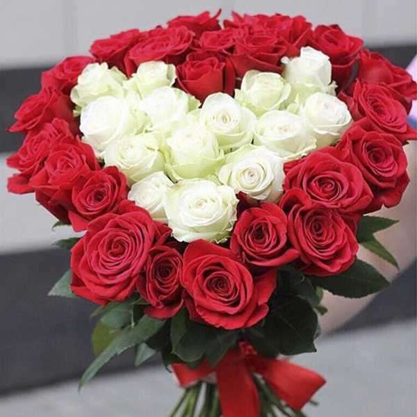 37 роз с белым сердцем внутри