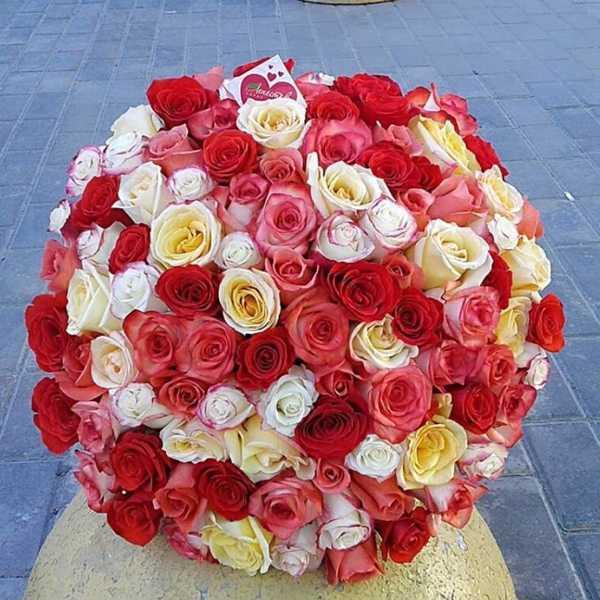 101 роза из 4 цветов