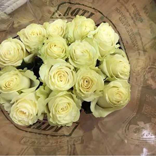 15 белых роз в крафт бумаге