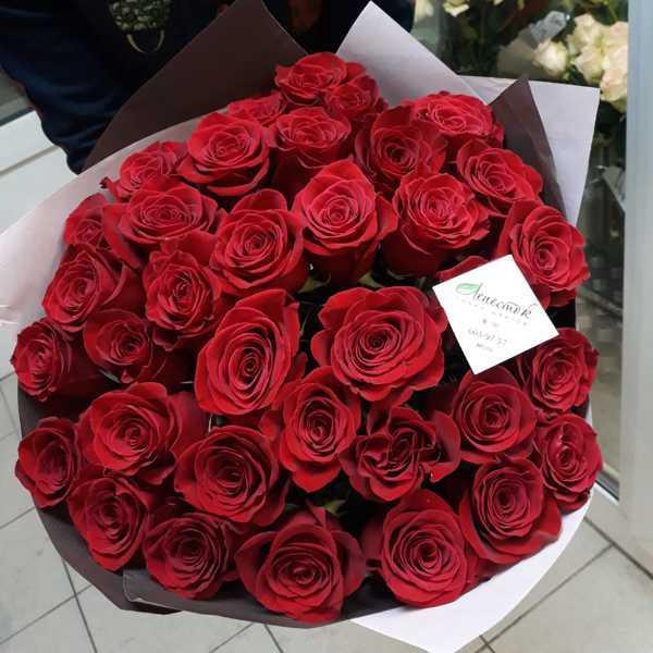 35 импортных, красных роз в букете,