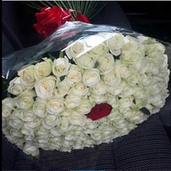 101 роза. 100 белых и 1 красная