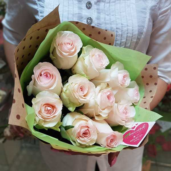 11 шикарных роз Sweet Mondial в упаковке