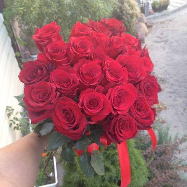 Букет из 23 красных импортных роз.