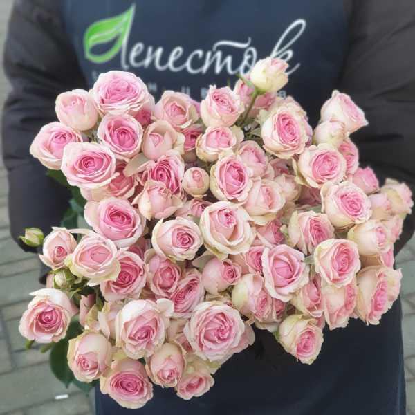 Охапка из 15 кустовых роз Динара