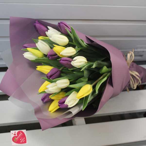 Букет из 25 желтых, белых, фиолетовых тюльпанов