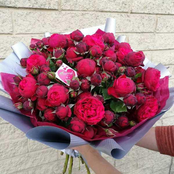 Букет из шикарных кустовых роз Red Piano