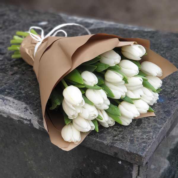 Белоснежный букет из 25 тюльпанов